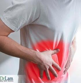 Adrenal-Gland