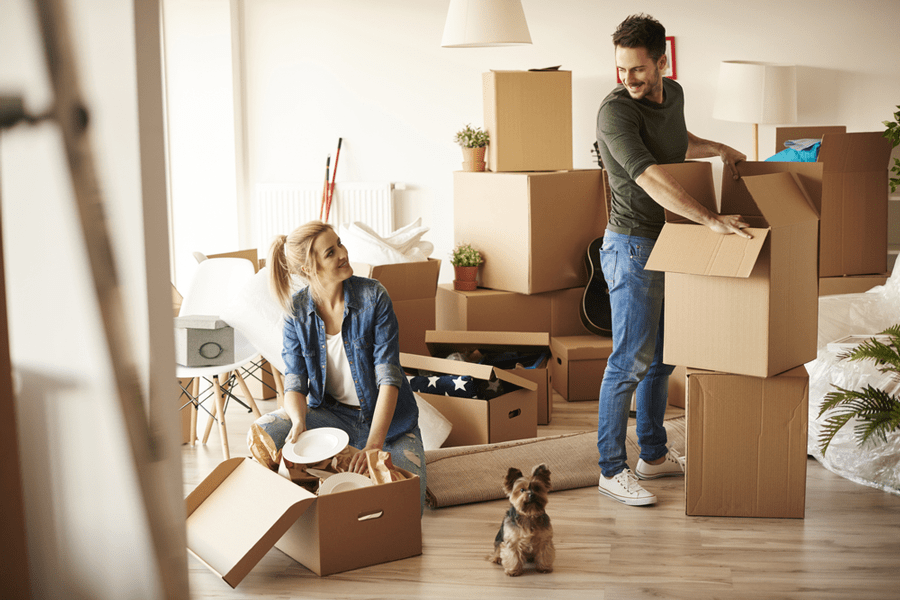 Why Do You Need Relocation Services - Core Movers